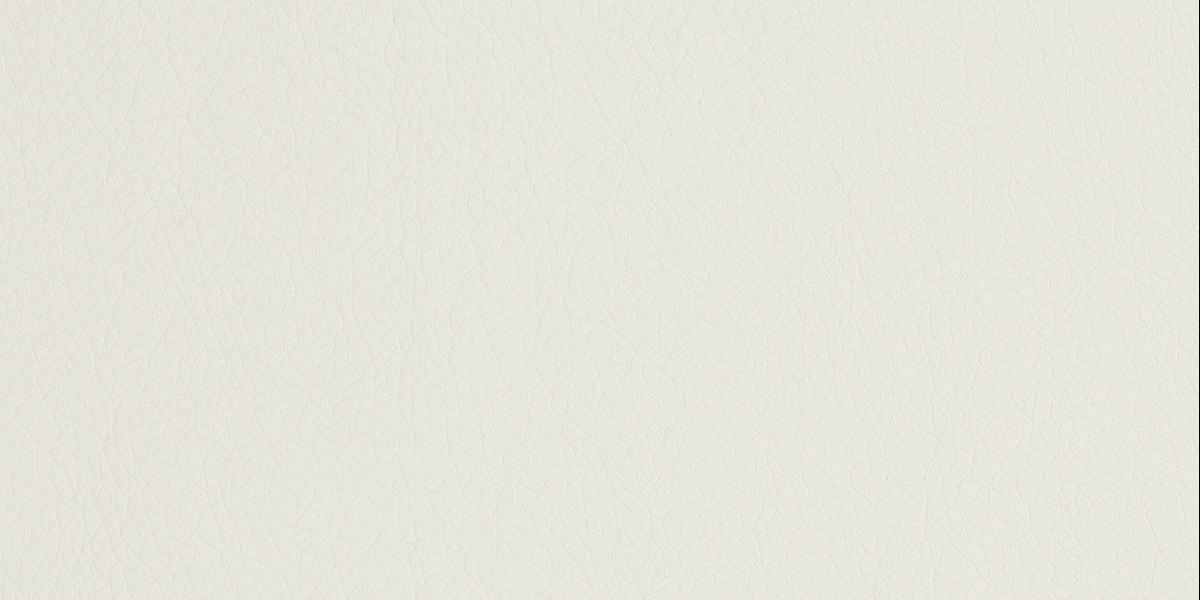 lotos blanc